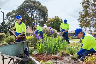Gardening - Allingtons Lawn Garden Care, Garden Maintenance Adelaide