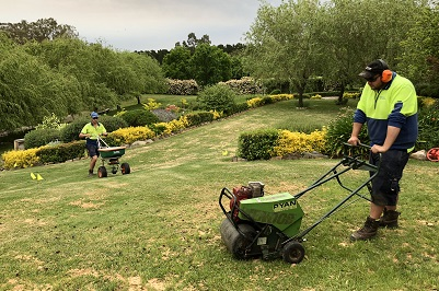 Lawns - Allingtons Lawn Garden Care, Garden Maintenance Adelaide