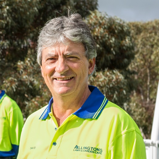 David Allington, Allingtons Lawn & Garden Care (Blog Page)