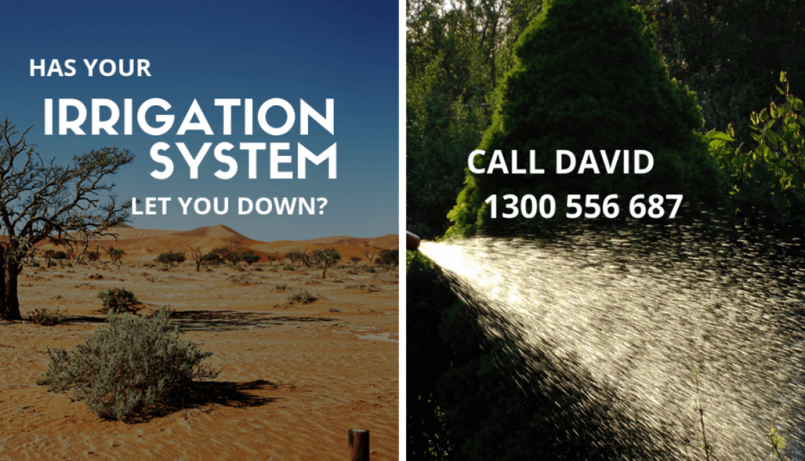 Allingtons Lawn & Garden Care, IRRIGATION SYSTEM Advert