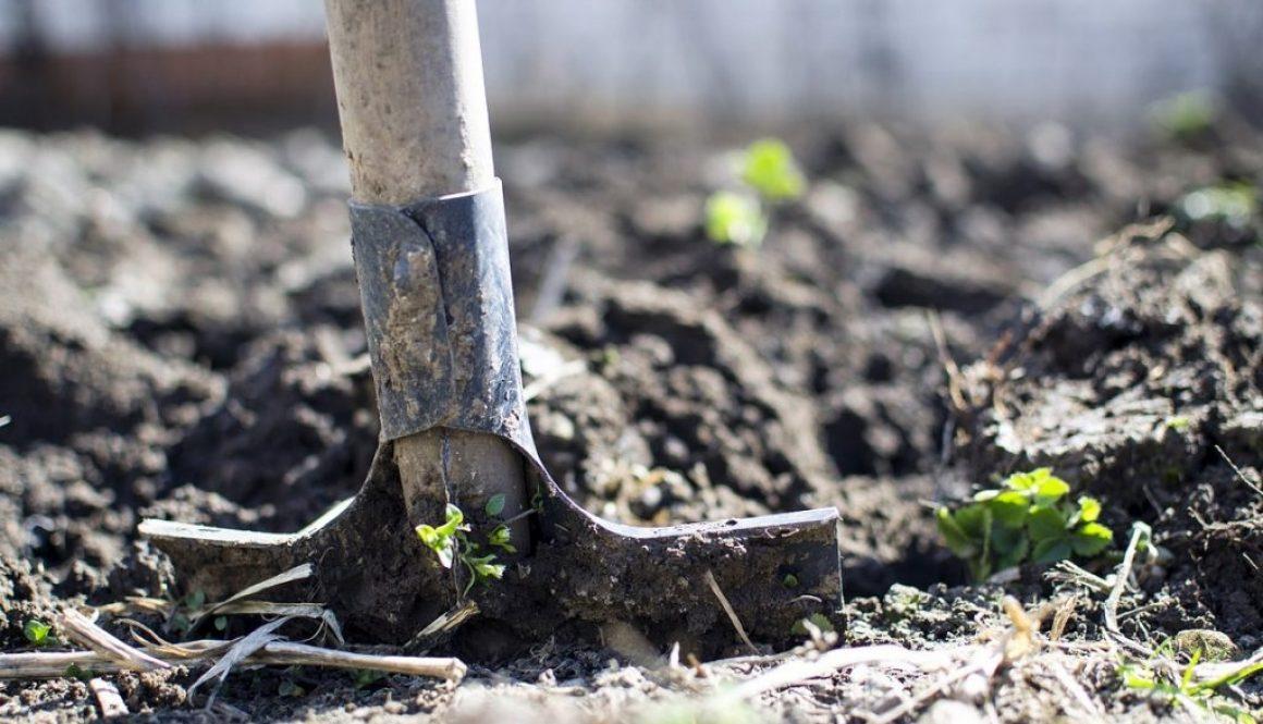 Soil Preparation & Drainage, Allingtons Lawn & Garden Care