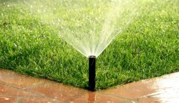 Smart Irrigation Systems, Making Sense of All Your Options